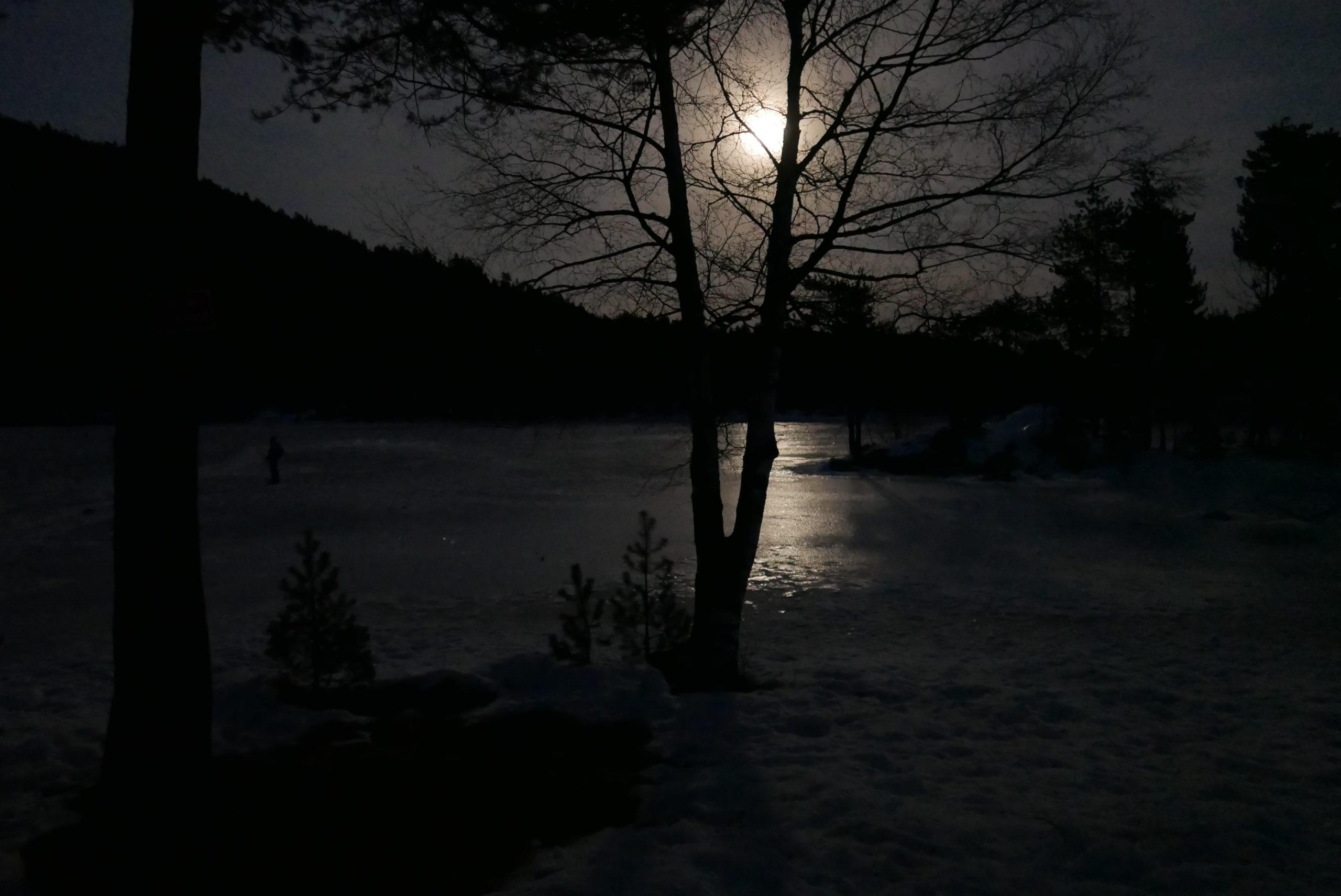 raquetes sota la lluna