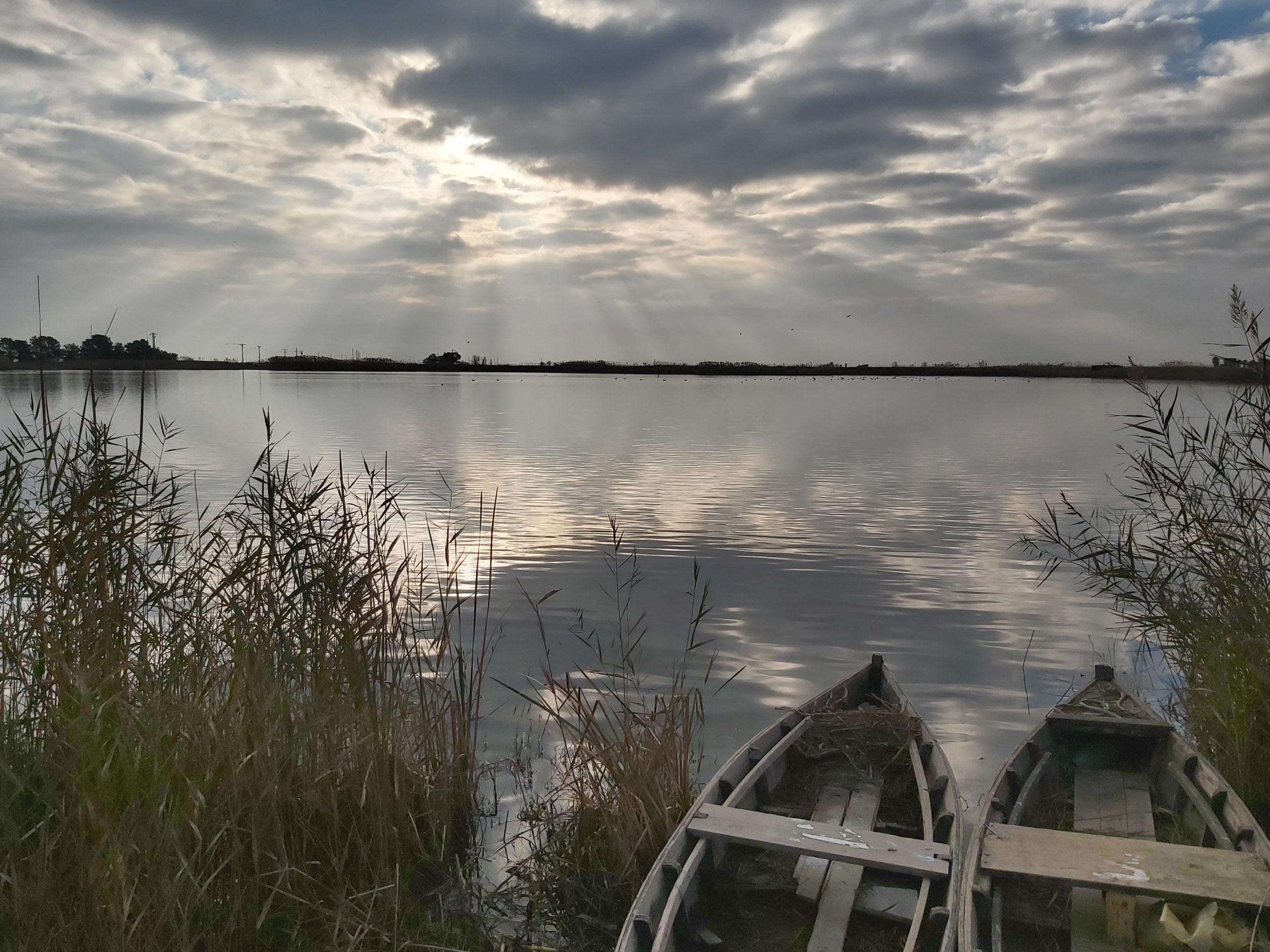 llacuna del delta